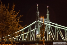 Freiheitsbrügge Budapest_6