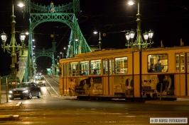 Freiheitsbrügge Budapest_8