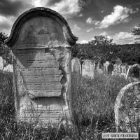 Rosenwiller Jüdischen Friedhof_3