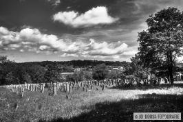 Rosenwiller Jüdischen Friedhof_6