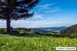 Jahreszeiten-Frühling