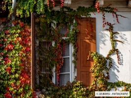 Jahreszeiten-Herbst