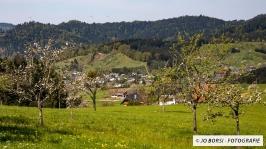 Unterharmersbach